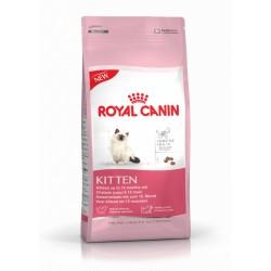 غذاي خشك بچه گربه 4 تا 12 ماه