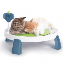 جای خواب راحتی گربه