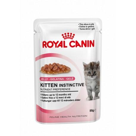 پوچ بچه گربه 4 تا 12 ماه در ژله